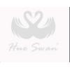 Hue Swan